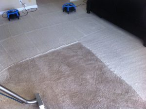 Carpet, Oriental Rug & Tile Cleaning, Marble Polishing in Palm Beach Gardens and Jupiter